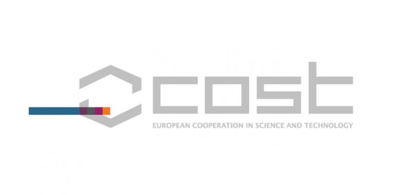European Action COST TU1305 Social Networks and Travel Behaviour – Questionnaire Survey